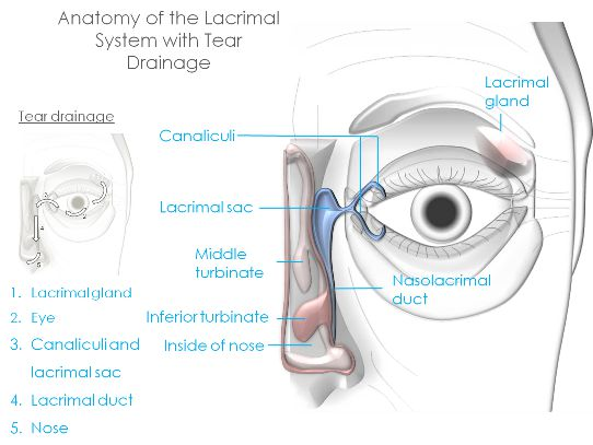 Post Blepharoplasty Syndrome
