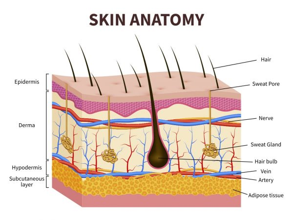 Chemical Peel Treatment 2